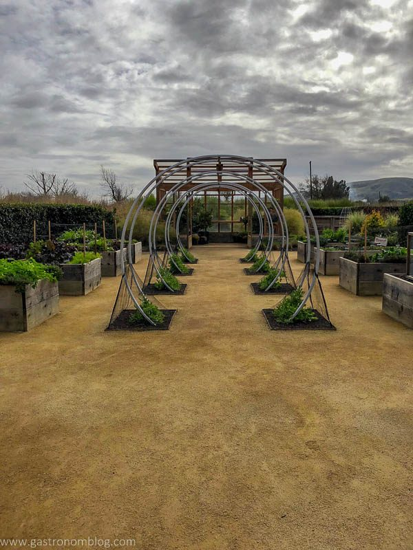 The Sunset Gardens at Cornerstone Sonoma