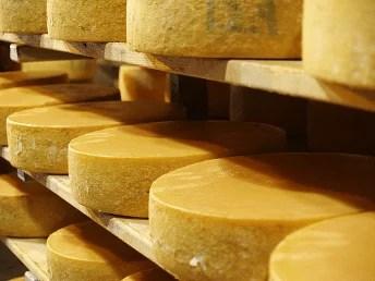Affinage des fromages