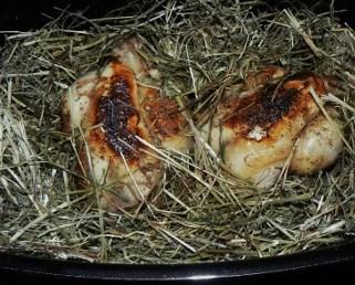 Pigeons cuits au foin