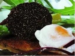 Truffe du Tarn et Garonne et œuf mollet
