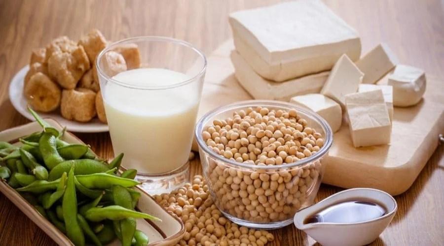 Gousses, graines et lait de soja, tofu et beignets au lait de soja