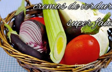 Cómo hacer cremas de verduras y hortalizas