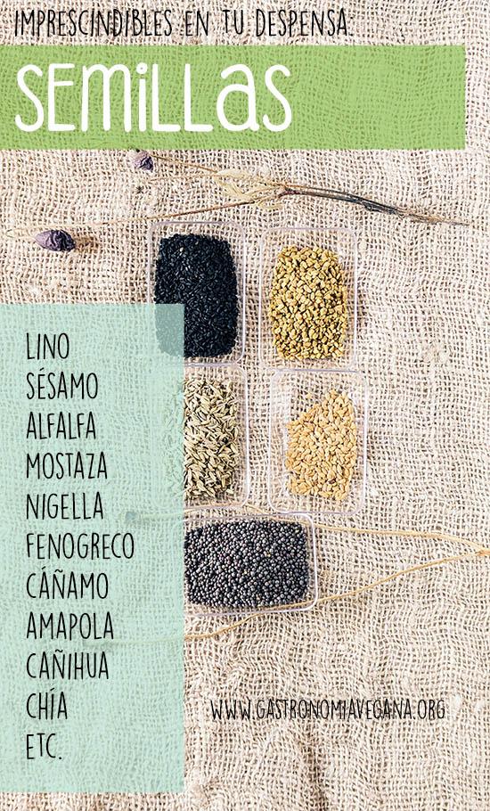 Alimentos imprescindibles en una despensa vegana: semillas -- GastronomiaVegana.org