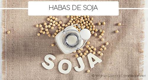 Soja - Tipos de legumbres - Cocinar con legumbres - GastronomiaVegana.org
