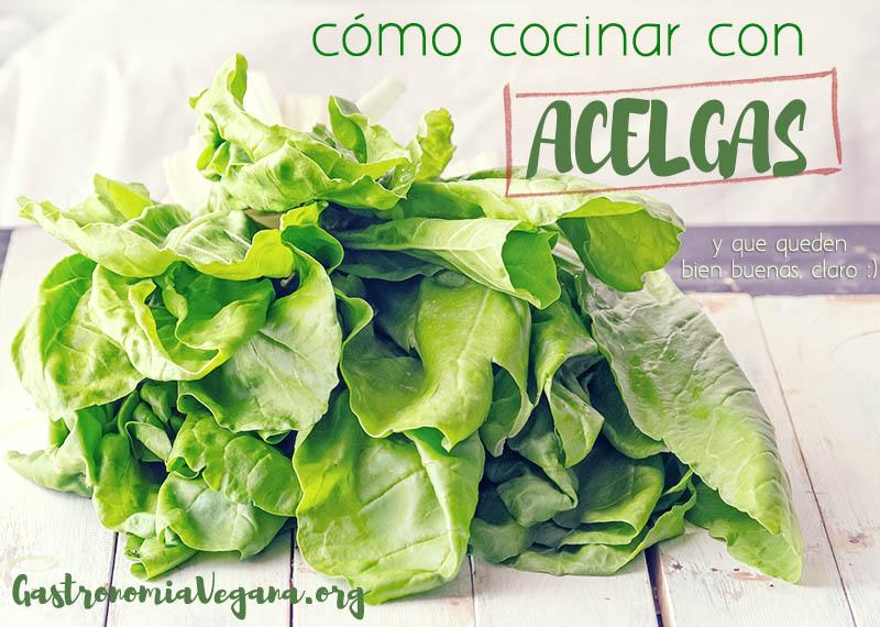 Cocinar Acelgas | Como Cocinar Con Acelgas Gastronomia Vegana