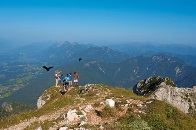 Wandern Kärnten, Wildtierbeobachtung