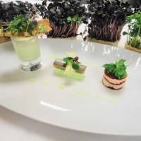 Fastenzeit: Rezept für feinsten Heringsschmaus