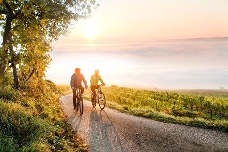 Niederösterreich Tourismusjahr Ausblick Traisental