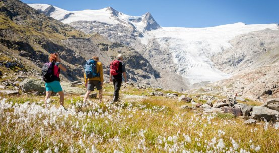 Sommer in den Nationalparks verbringen