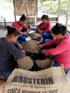 Beste Qualität von der Ernte bis zur Zubereitung.