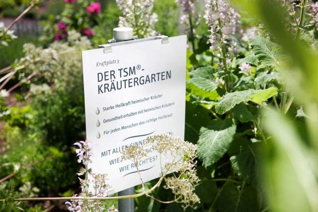 Farm to table Traditionell Steirische Medizin ®