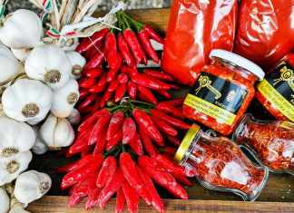 Hungarian chilli and spice
