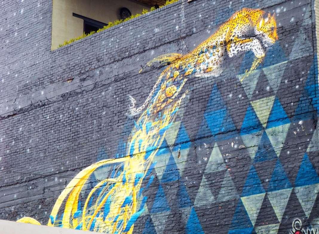 Johannesburg Street Art - Leaping Leopard - Sonny