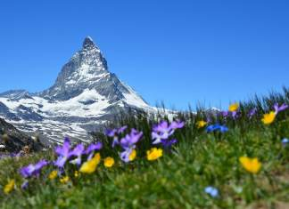 The most beautiful places in Switzerland - #switzerland #travel #geneva #zermatt #switzerland #alpine #ski #morcote #lugano #lucerne #montreux #steinamrhein #travelblog #suisse #SwissAlps #myswitzerland #switzerlanditinerary #europetravel #europe #bucketlist #gastrotravelogue
