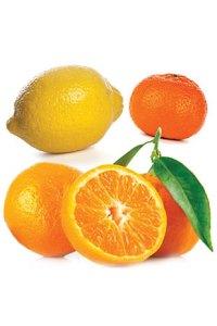Citrus Bliss® Invigorating Blend