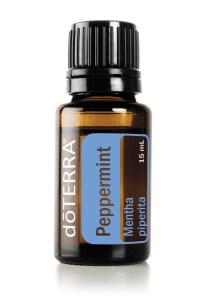 Peppermint Mentha piperita