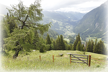 Image of a gate facing a valley
