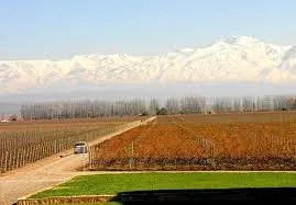 Argentina is a wine region