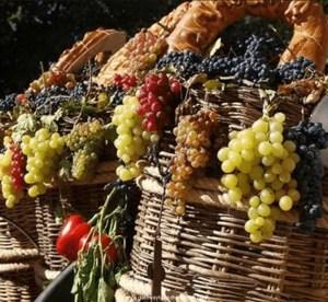 Mendoza Wine Festival