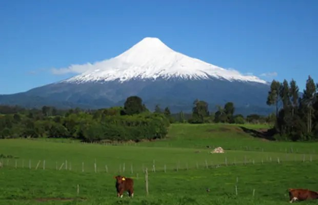 image of volcán osorno Dairy