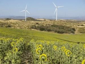 turbinas en el campo