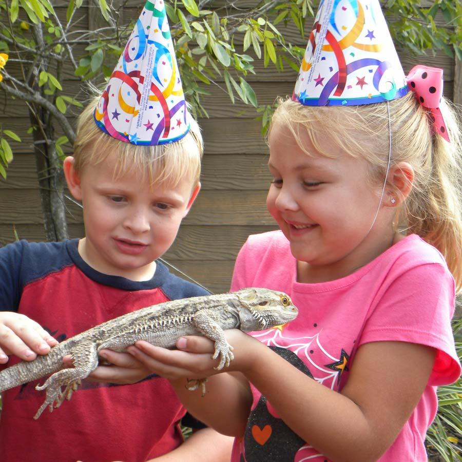 Birthdays Gatorland