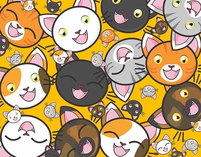 Dichiarazione Internazionale di Responsabilità verso i gatti