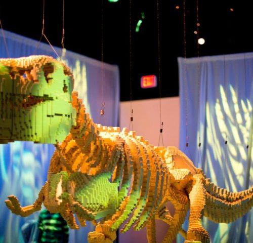 sawaya-dinosauro