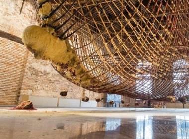 Biennale Arte di Venezia argentina