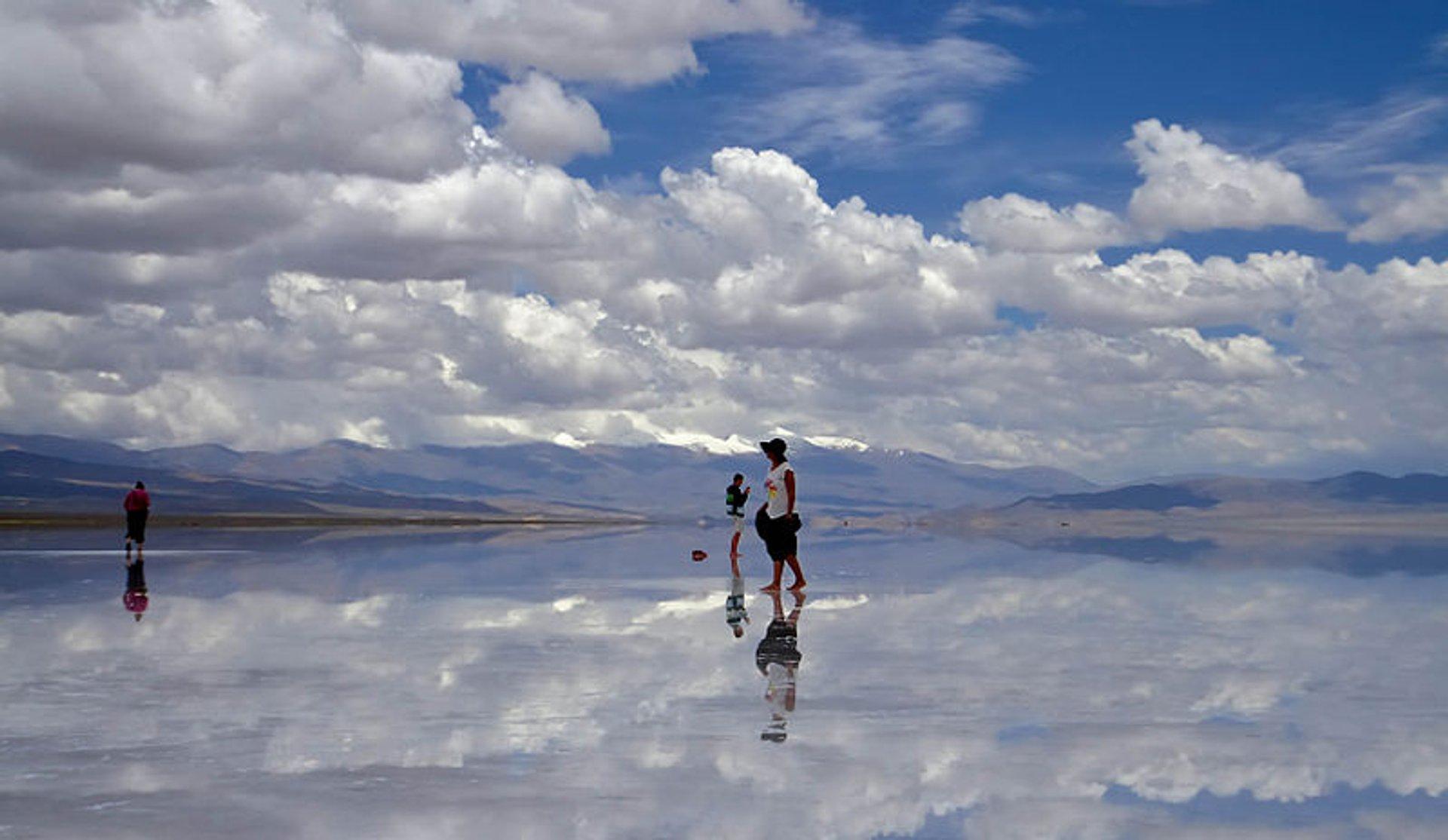 meraviglie naturali dell'argentina salinas grandes jujuy