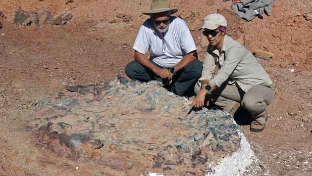 cimitero dinosauri argentina san juan