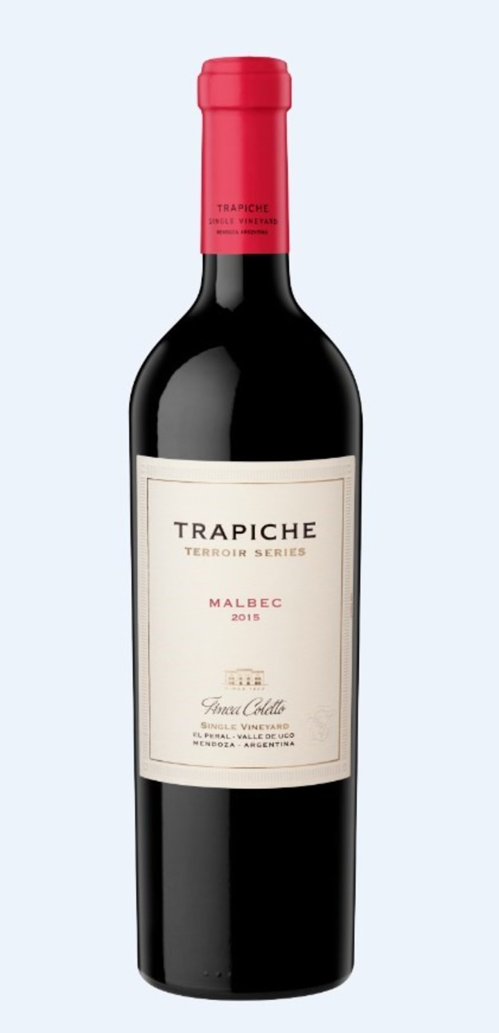 malbec argentino migliore del mondo Trapiche Terroir Series Malbec 2015 - Finca Coletto