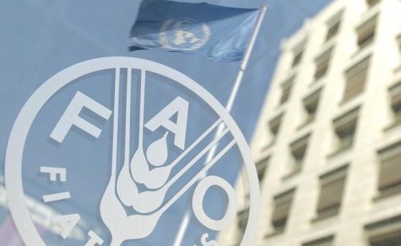 fao argentina incertezza alimentare povertà