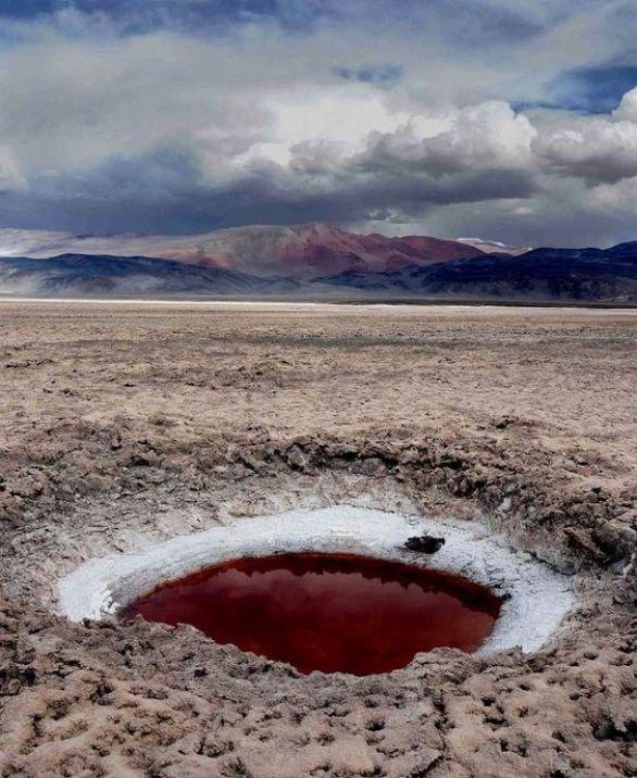 argentina catamarca salar de antofalla ojos del campo