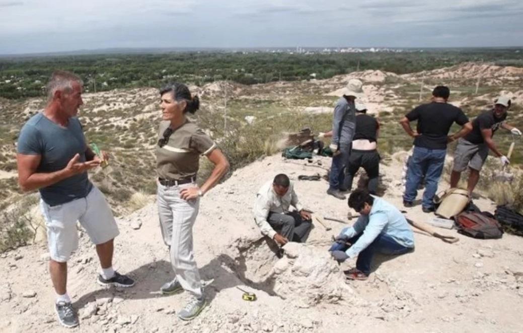 dinosauri patagonia argentina resti titanosauro neuquen