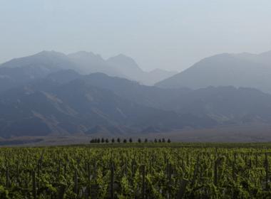 valle de uco argentina
