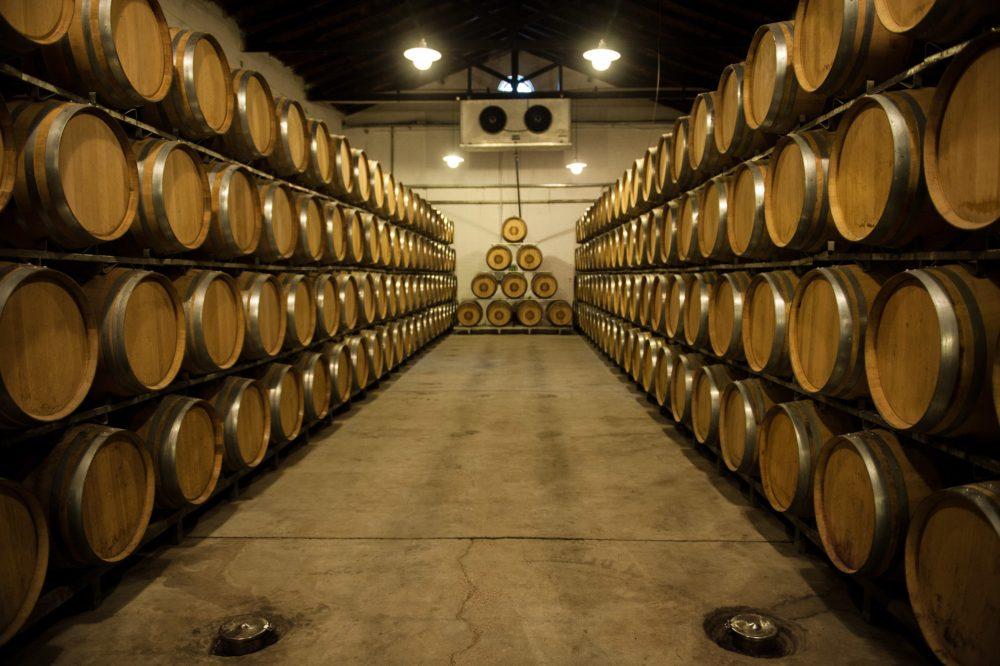 vino argentino export 2019