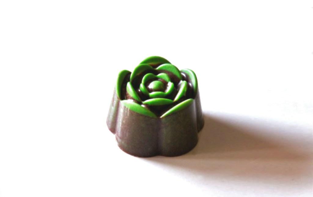 pralina artigianale di cioccolato a forma di fiore camelia