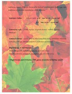 Seminaras 2-page-004