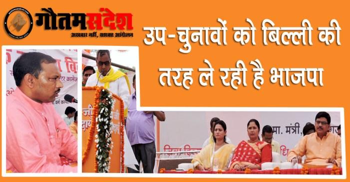 उप-चुनावों को बिल्ली की तरह ले रही है भाजपा: राजभर