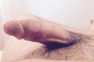 algerien-gay-ofgdjcxTiZ1vq58fjo5_640