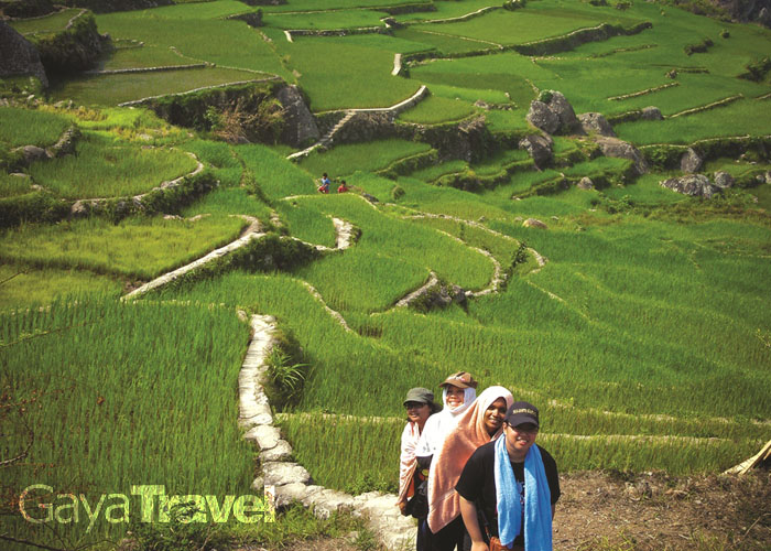 Trekking through the rice terraces