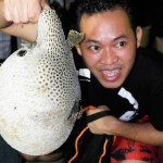 Porcupine fish is considered a catch too