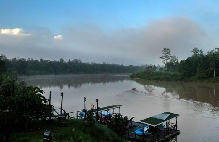 Kinabatangan River Sabah.