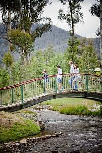 Family walking along Marysville Creek Bridge