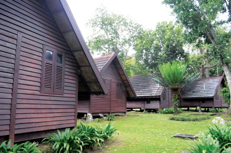 Mutiara Taman Negara chalets.