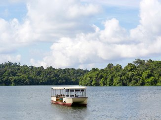 River Safari Cruise - Passengers on board the new River Safari Cruise immerse in the breathtaking setting of the tropical rainforest and shimmery waterways of the Upper Seletar Reservoir.