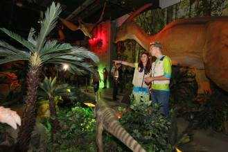 Dinoscovery - Explore the exhibits and attractions at Dinoscovery