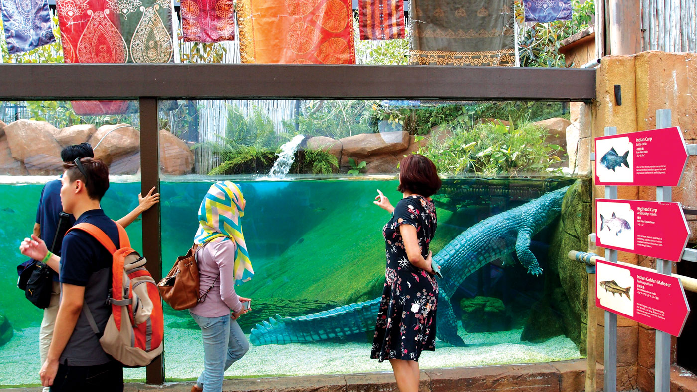 River Safari is designed to profile freshwater habitats from iconic rivers of the world.