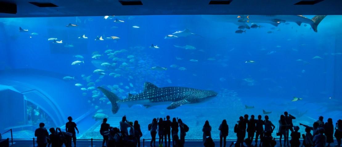 Okinawa Journal: 6 Tourist Spots to Visit – Part I